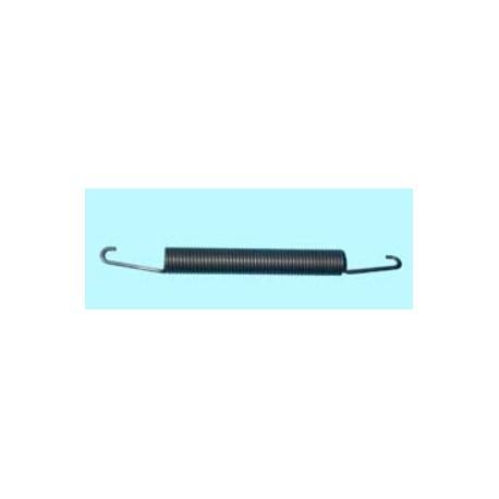 Muelle de sujección de puerta de lavavajillas Ariston, Indesit D4000, DG5100, DG5300B